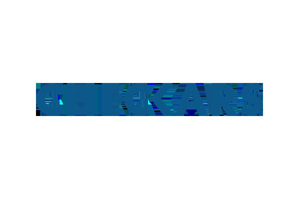 logo-checkars